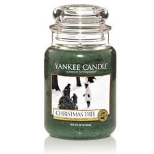 tree scented candles rainforest islands ferry