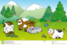 cows pictures for kids kids coloring europe travel guides com