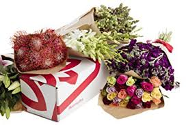flower of the month flowers of the month subscription 12 months