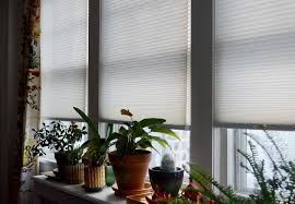 interior design jc penny blinds levolor lowes levolor blinds sale