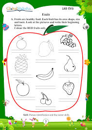 buy worksheets for lkg maths environmental science evs and