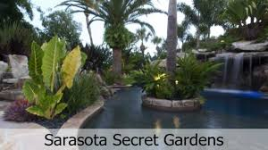 landscaping around swimming pools with tropical plants in sarasota