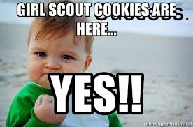 Success Baby Meme - girl scout cookies are here yes success baby meme generator
