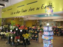 wholesale flowers miami field of flowers opens newest flower market in south miami dade