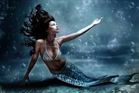 mermaids cases mermaid sightings