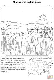 mississippi sandhill crane coloring page free printable coloring