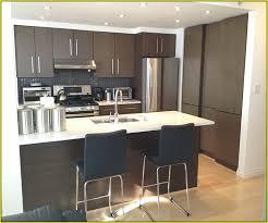 Brilliant Kitchen Cabinet Veneers Veneer To Design Decorating - Kitchen cabinet veneers