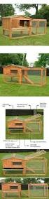 Build Your Own Rabbit Hutch Rabbit Hutch With Automatic Collector Rabbit Hutches