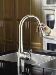 Moen Kleo Kitchen Faucet Moen Kleo Pull Kitchen Faucet Best Of Moen Ca87011srs Kleo