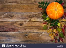 happy thanksgiving background with pumpkin and autumn leaves on