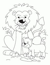 baby lion coloring pages kids coloring