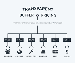 Plan Com by Transparent Pricing What Your Money Goes Toward With Buffer