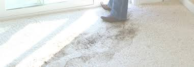 Denver Area Rugs Pretty Area Rug Cleaning Denver Collection Rug Ideas