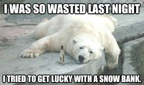 Polar Bear Meme - drunk polar bear memes quickmeme