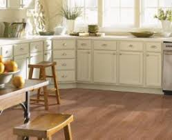 Flooring Options For Kitchen Flooring Options Houses Flooring Picture Ideas Blogule