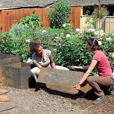164 best anything for vegetable gardens images on pinterest