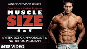 size gain workout program overview muscle size 5x5 program by