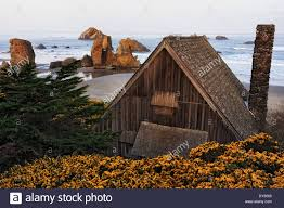 spring gorse blooms around this rustic cabin overlooking face rock