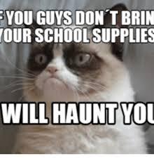 Grumpy Cat Meme I Had Fun Once - 25 best memes about grumpy cat school grumpy cat school memes