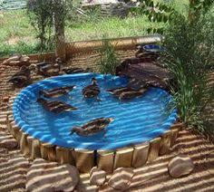 here is an easy way to build a duck pond in your backyard the