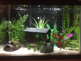 10 gallon planted tank led lighting 10 gallon fish tank stand ideas for your aquarium fish tanks fish
