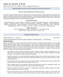 Senior Management Resume Templates 59 Executive Resume Templates Free U0026 Premium Templates
