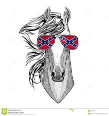 Flag Confederate States Of America Horse Hoss Knight Steed Courser Wearing Glasses With National