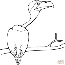 vulture coloring pages preschool and kindergarten