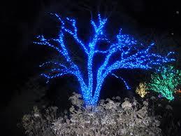 lighting design landscape lights around garden fountain with