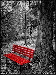 black and white photo with astounding black benchtop white