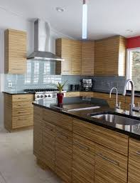 zebrawood kitchen cabients contemporary kitchen remodel ideas