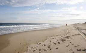 dr beach names florida u0027s siesta beach best beach in us orlando fl