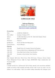 project manager resume technical project manager resume best