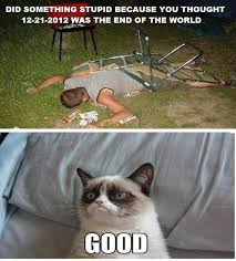 Angry Cat Good Meme - grumpy cat pictures with captions 12 21 2012 grumpy cat meme by
