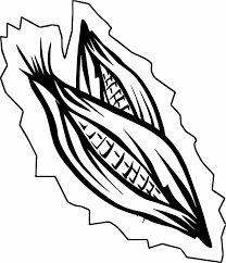 corn coloring pages newcoloring123