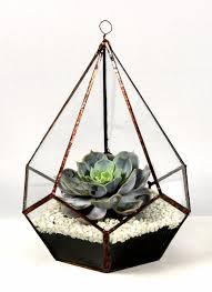 25 unique glass terrarium ideas on pinterest terrarium diy diy
