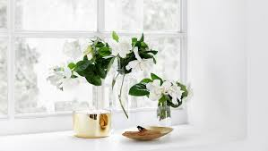 gardenia flower delivery best gardenia flower delivery luxury flowers in a box