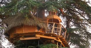 chambre dans les arbres sur un arbre perché à pons 27483