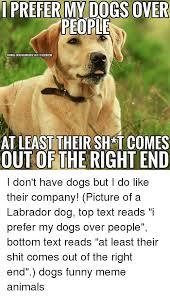 Dog Text Meme - 25 best memes about funny meme animals funny meme animals memes