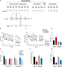 reducing gabaa α5 receptor mediated inhibition rescues functional