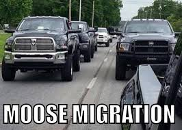 Powerstroke Memes - funny truck memes ford powerstroke diesel forum