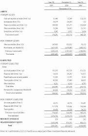Interim Balance Sheet Template Free Translation From The Original Financial Statements Prepared