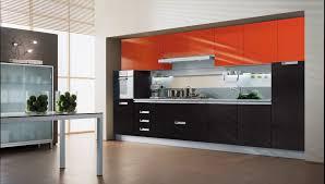 ultra modern kitchen style with glossy black laminate base cabinet