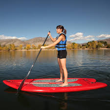 lifetime freestyle 9 8 paddleboard with paddle in walmart