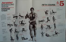 joe weider u0027s bodybuilding system amazon co uk joe weider