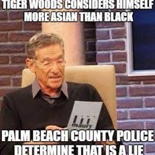 Dui Meme - the internet has field day with tiger woods dui hiphollywood