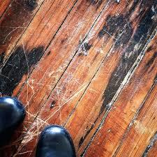Replacing Hardwood Floors Repair Wood Flooring Repair Hardwood Floor Damage Modern On Floor