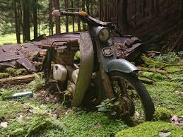 half buried honda super cub