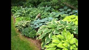 Shady Backyard Ideas Small Shade Garden Design Ideas Youtube