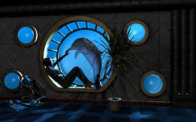 Dolphin Rugs Room Window Porthole Water Dolphin Palm 9utp Loversiq